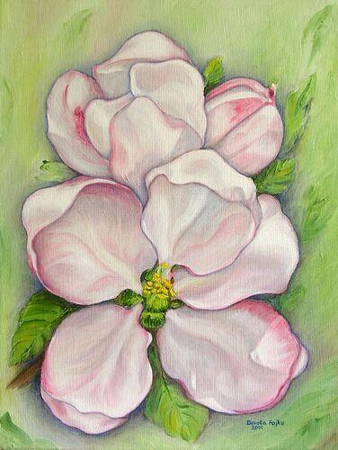 Kwiaty_jabloni_II_OK